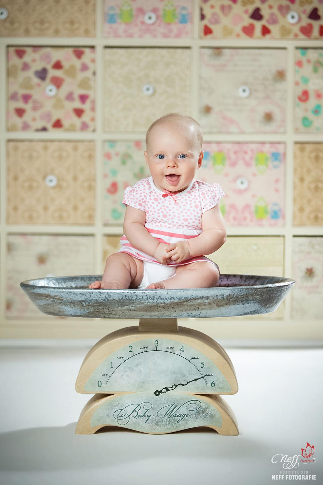 Babyfotos. fotograf gesucht