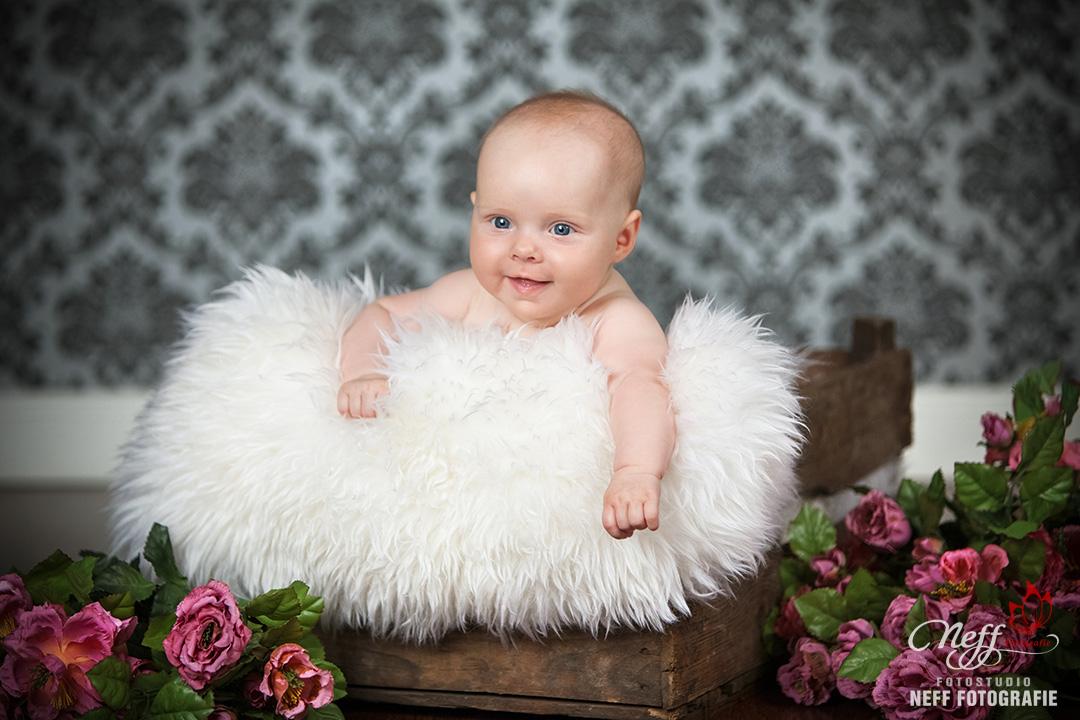 Babyfotos neugeborene